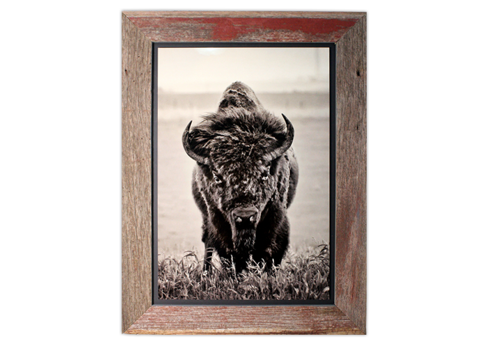 barn wood float frames - Barnwood Frames